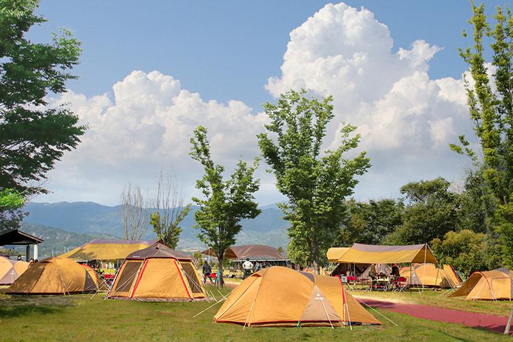 芝生広場にたくさんのテントが建っている