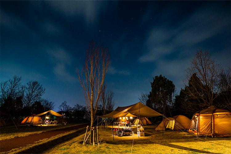 夜の園内に浮かび上がるテントの灯り