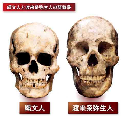 ネトウヨ「こいつ朝鮮耳だから在日濃厚」  朝鮮耳って何だよ… [無断転載禁止]©2ch.net [159320776]YouTube動画>10本 ->画像>101枚